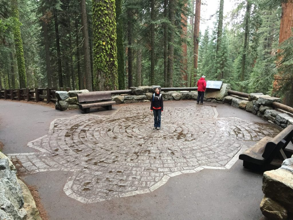General Sherman's footprint